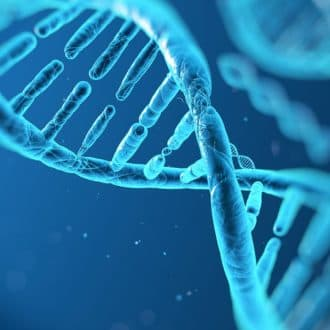 DNA based lifestyle